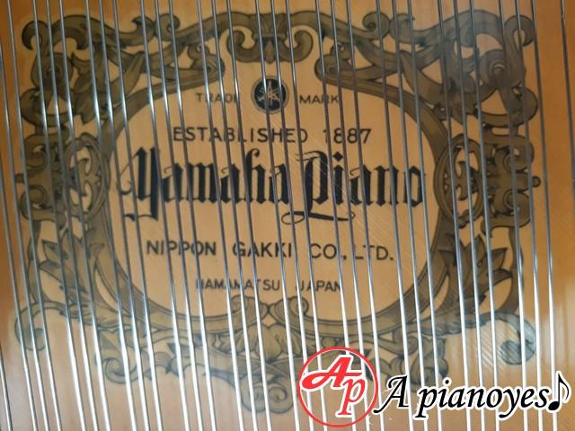 grand piano G5E yamaha