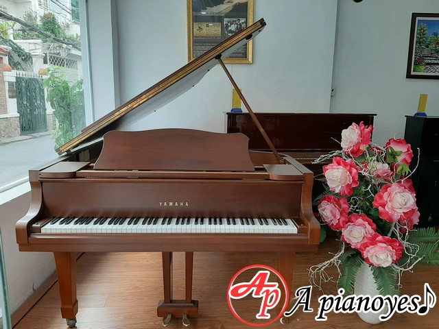 Grand Piano Yamaha G5-E