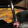 grand-piano-miki-2