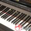 mua-grand-piano-miki-2