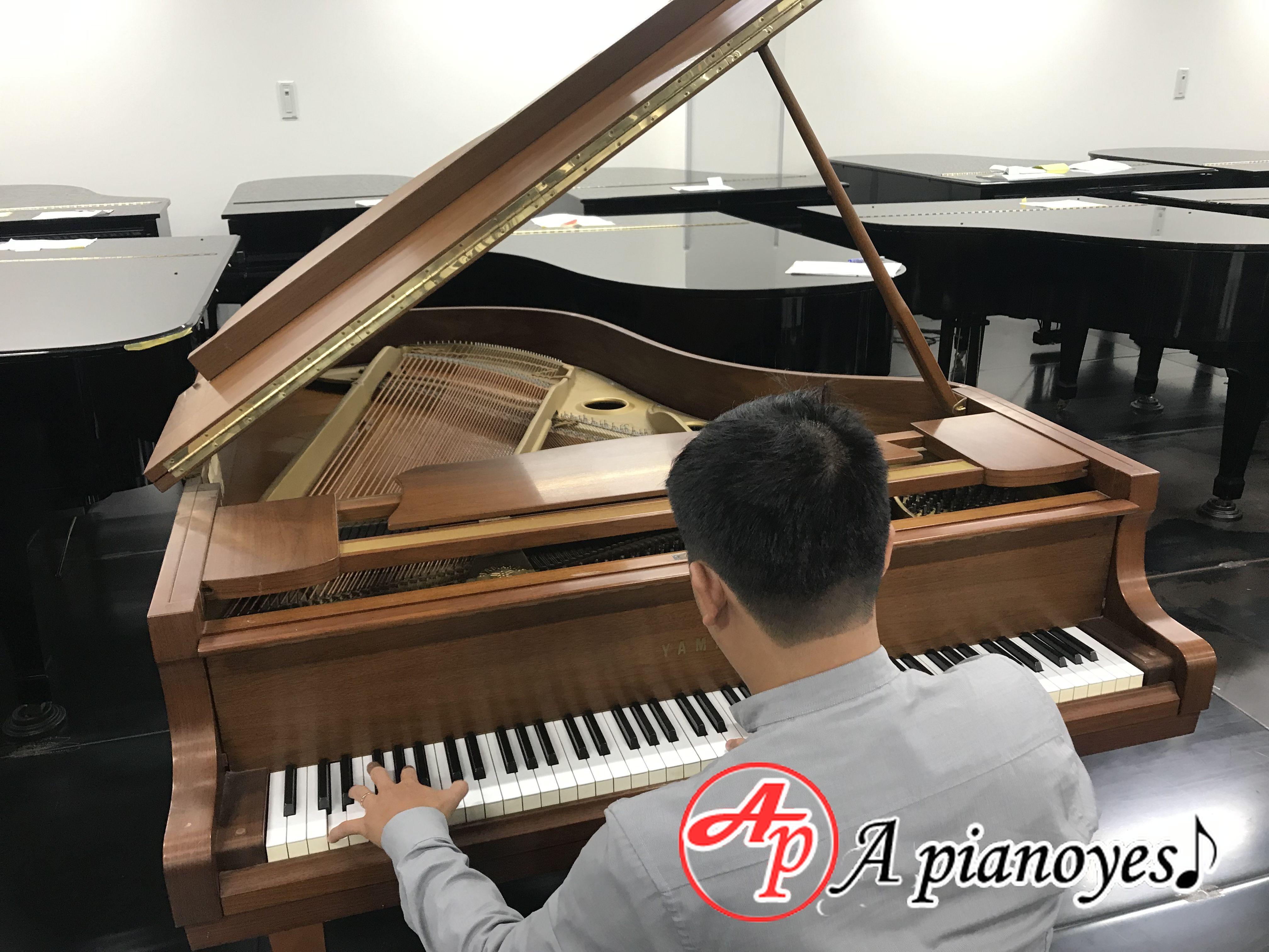 mua đàn piano yamaha