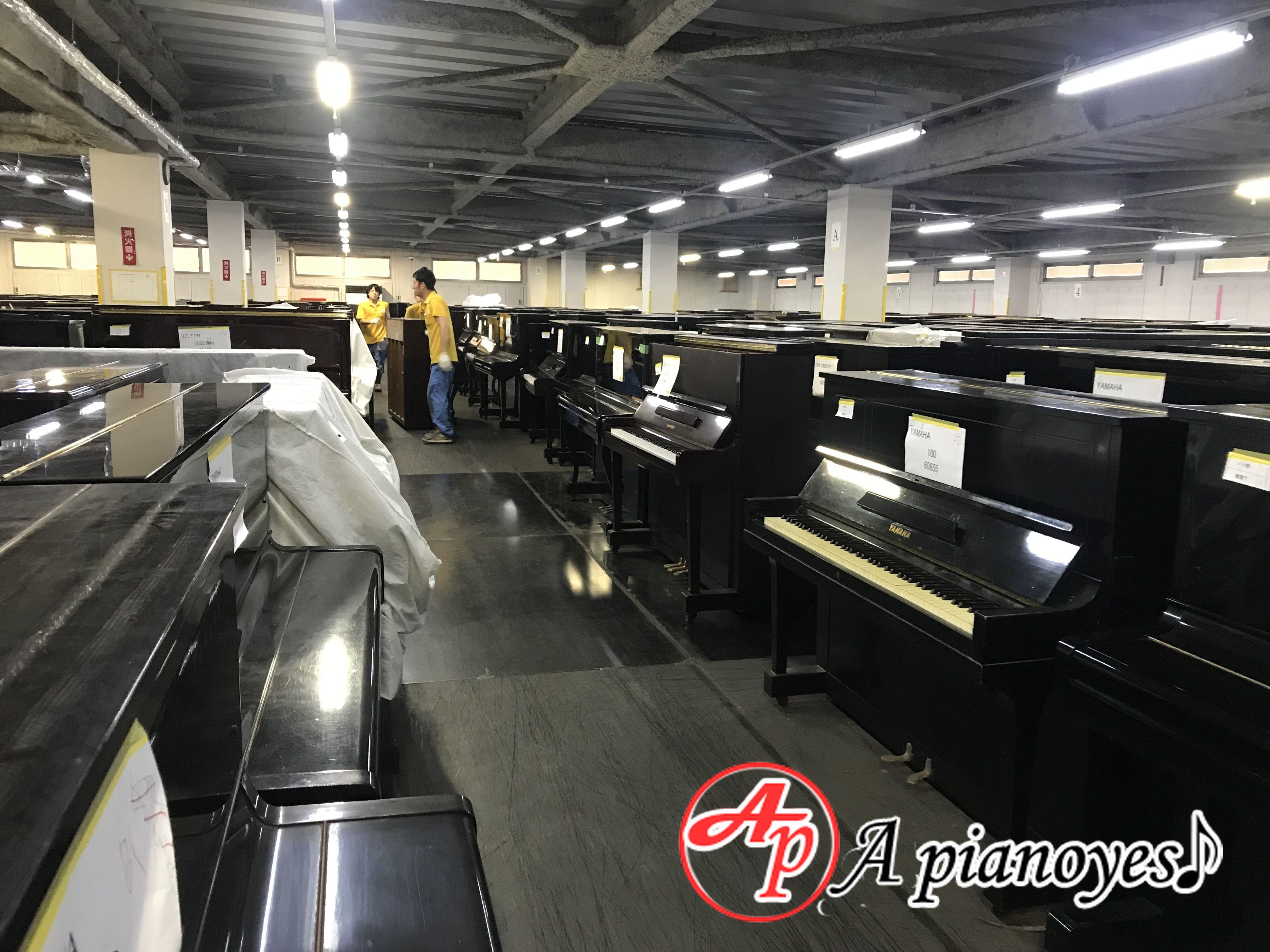 cho thuê đàn piano