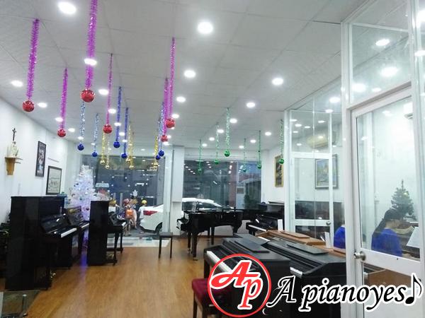 địa chỉ bán đàn piano tại TP.HCM