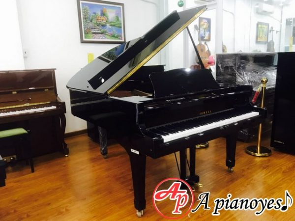 mua piano giá rẻ