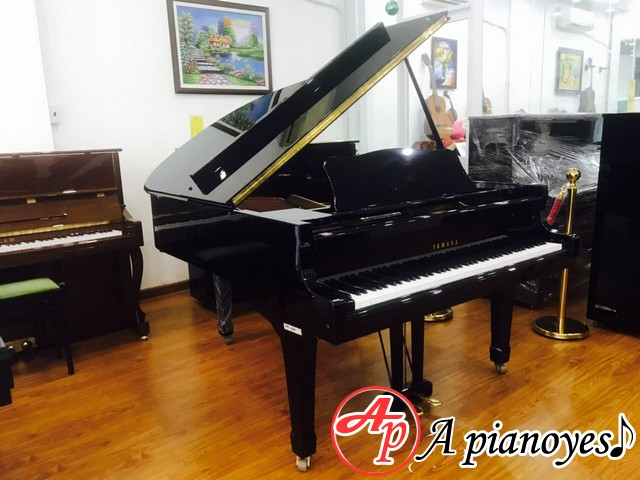 grand piano yamaha