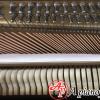 mua-piano-samick-su-118f