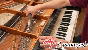 lên dây đàn piano