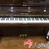 mua-dan-piano-young-chang-e111