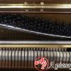 mua-piano-yamaha-w106