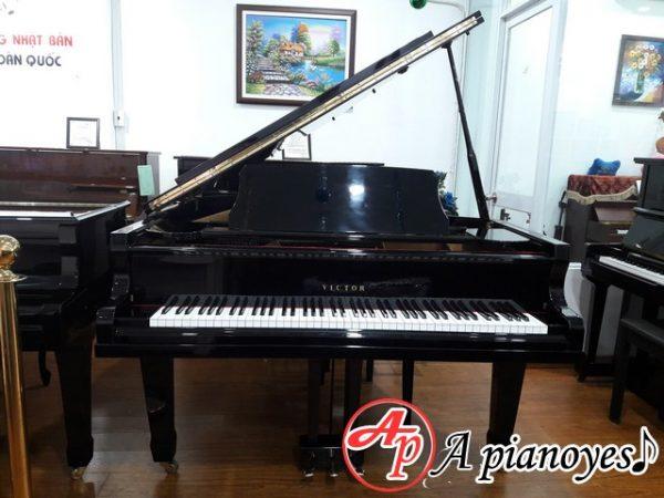 grand-piano-victor-vg500 (3)