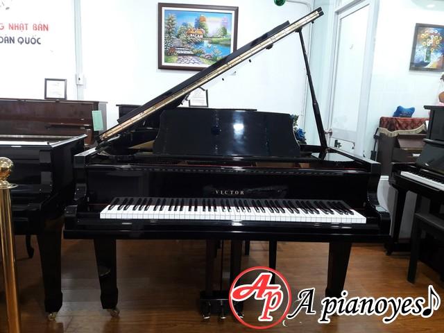 Đàn Grand Piano Victor VG500