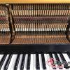 dan-piano-apollo-A6 (6)_result