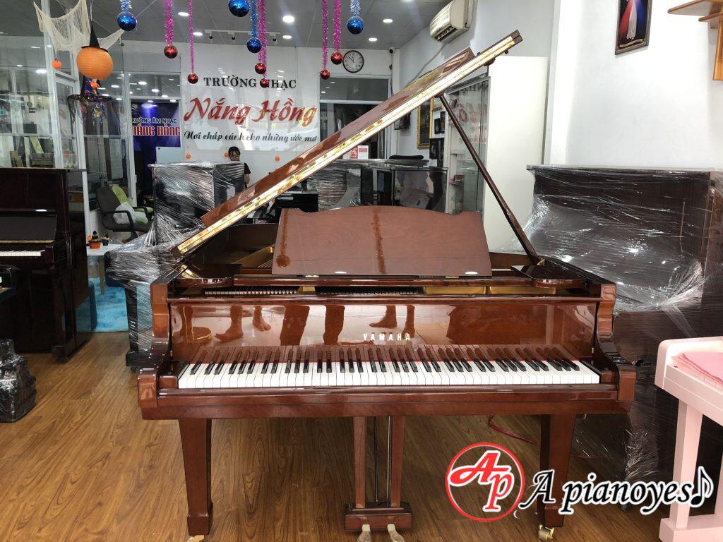 cho thuê đàn piano tp.hcm